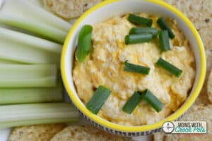 Crockpot Buffalo Chicken Dip Moms with Crockpots