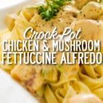 crock-pot-chicken-&-Mushroom-fettuccine-alfredo