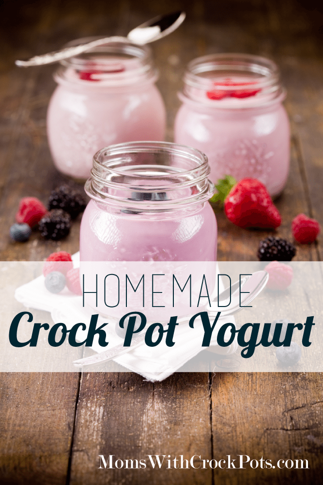 Only 2 ingredients!  Make your own yogurt in the crock pot! So simple! #recipe